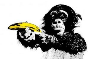 Los empleados no son chimpancés